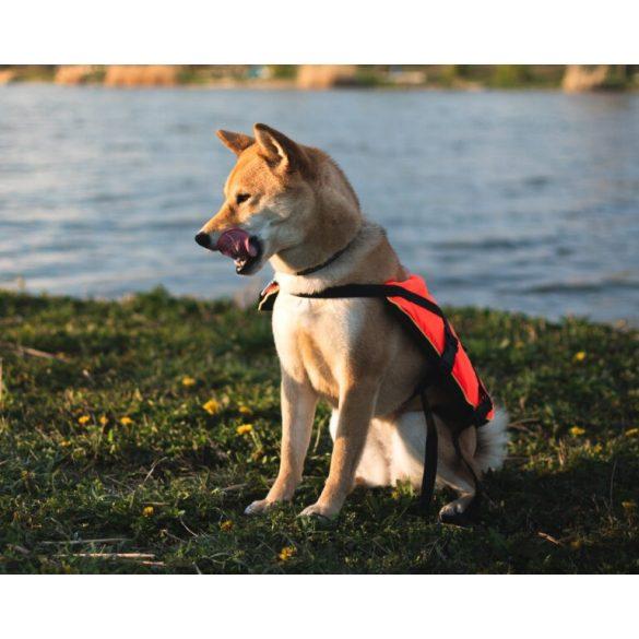 NAVY-Mentomelleny-kutyaknak-Tobb-meretben